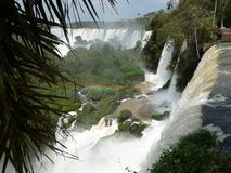 Amazing Iguazu Falls Royalty Free Stock Images
