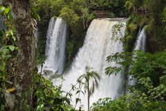 The amazing Iguazu waterfalls in Brazil and Argentina royalty free stock photography
