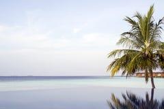 Amazing infinity pool in Maldives. Vilamendhoo Island. Indian Ocean Stock Image