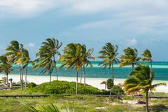 amazing inviting view of tropical white sand beach, ocean and blue sky background Royalty Free Stock Images