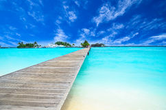 Amazing island and pristine beach in Maldives Stock Photography