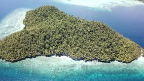 Aerial View of Raja Ampat Island Scenery. The amazing islands of Raja Ampat, Indonesia, are surrounded by healthy coral reefs. This tropical region is known as stock footage