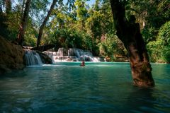 Amazing Kuang Si Falls in Luang Prabang, Laos. Perfect blue water combined with beautiful sunlight and powerful green colors. royalty free stock image