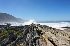 Amazing landscape. In tzizikama national park, South Africa Stock Photos