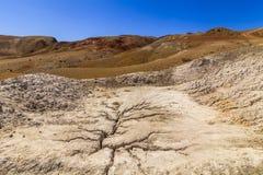 Amazing landscape of the desert Royalty Free Stock Photography