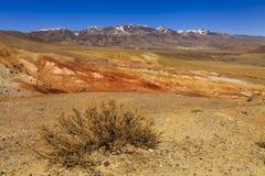 Amazing landscape of the desert Royalty Free Stock Photo