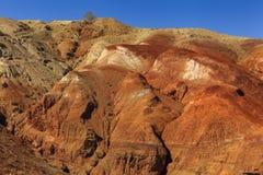 Amazing landscape of the desert Stock Images