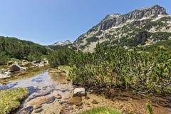 Amazing Landscape of Dzhangal peak and Banski lakes, Pirin Mountain Royalty Free Stock Images