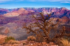 Amazing Landscape in Grand Canyon National Park,Arizona,USA Stock Photo