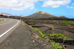 Amazing landscape of Lanzarote Island with volcanic black ground with the vineyards of La Geria, Canary Islands, Spain royalty free stock photos