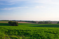 Amazing landscape in Moravia Stock Photography