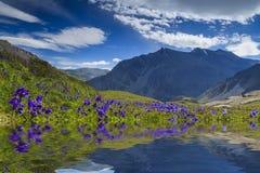 Amazing landscape with mountains Stock Image