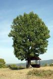 Landscape near Glozhene Monastery, Stara Planina Mountain  Balkan Mountains, Lovech region, Bulgaria Stock Photo
