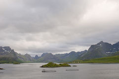Amazing of landscape of Norwegian fjord Royalty Free Stock Photography