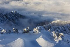 Amazing landscape of rugged mountain ridge raising above the clouds and fog stock photos