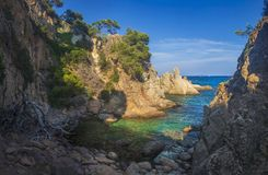 Amazing landscape of sea bay in Mediterranean on clear sunny day. Rocky coast, trees and turquoise water in sea. Wild seascape. Of bay. Beautiful nature of stock photos