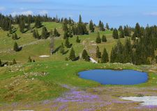 Amazing Landscape Slovenia Spring Vegetation. Amazing spring landscape from Slovenia, Europe.  Velika planina in the heart of the Kamnik Alps. With patches of Royalty Free Stock Photo
