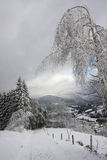 Amazing landscape of snowy Vosges mountains, France Stock Photo