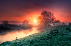 Amazing landscape at sunrise Stock Photos