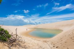 Amazing landscape, white sand dunes, blue sky, flesh water lagoon, wood trees and a lonely person.  stock image