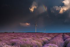 Amazing lavender fields in the summer time with storm clouds and raibow. The light that looks after the storm is often the most spectacular, especially when the Stock Photography