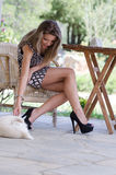 Amazing leggy women with a dog for companionship. Amazing cute and slim leggy woman sitting on wooden chair wearing high heels and short dress revealing her long Stock Photography