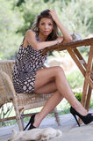 Amazing leggy women with a dog for companionship. Amazing cute and slim leggy woman sitting on wooden chair wearing high heels and short dress revealing her long Stock Image