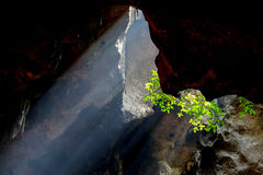 Amazing light in Khao Luang Cave in Phetchaburi Province,Thailan Royalty Free Stock Image