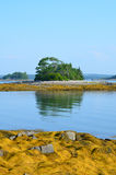 Amazing Little French Island in Casco Bay Stock Images