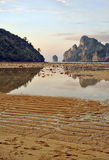 Amazing low tide at sunset on Koh Phi Phi Island Stock Photo