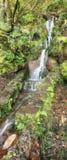 Amazing Madeira waterfall landscape Stock Photo