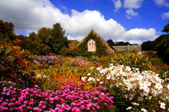 amazing magic garden with flowers and house