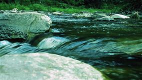 Amazing, magnificent, fast, stony mountain wild river run in the dense green forest. stock footage