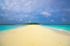 Amazing Maldives beach. With golden sand Royalty Free Stock Image