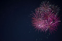 Amazing maroon red pink celebration fireworks Stock Images