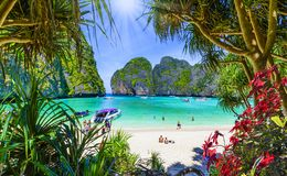 Free Amazing Maya Beach In Phi Phi Islands, Thailand Royalty Free Stock Photos - 135187578