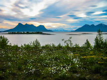 Amazing midnight sun in Norway Royalty Free Stock Image