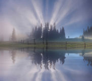 Amazing misty sunrise over the forest lake.  Carpathian Royalty Free Stock Photography