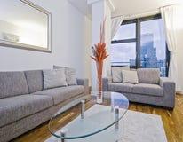 Amazing modern living room Stock Image
