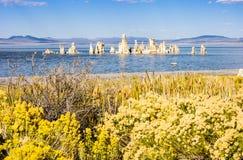 Amazing Mono Lake, California, USA Stock Photo