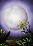 Amazing Moon (2013) Royalty Free Stock Images