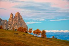 Amazing morning view on Seiser Alm - Alpe di Siusi Royalty Free Stock Photo