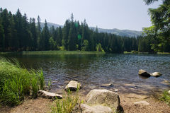 Amazing mountain lake in the summer Royalty Free Stock Photo