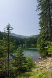 Amazing mountain lake in the summer Royalty Free Stock Photos