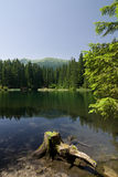 Amazing mountain lake in the summer Stock Photography