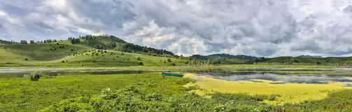 Amazing mountain lake with white lilies - panoramic summer lands Royalty Free Stock Image