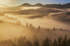Amazing mountain landscape with dense fog. Stock Photos