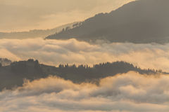 Amazing mountain landscape with dense fog. Royalty Free Stock Image