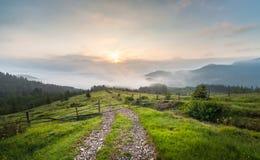Amazing mountain landscape with fog. The carpathian Stock Images
