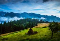 Amazing mountain landscape with fog Stock Photo